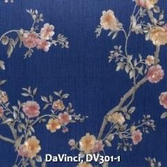 DaVinci-DV301-1