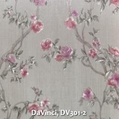 DaVinci-DV301-2