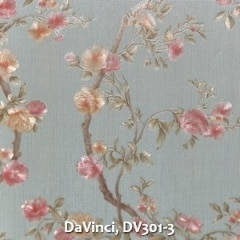 DaVinci-DV301-3