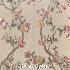 DaVinci-DV301-4
