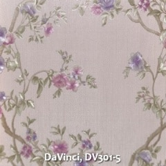 DaVinci-DV301-5