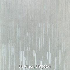 DaVinci-DV302-1