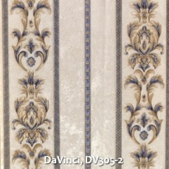 DaVinci-DV305-2
