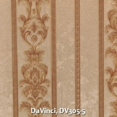DaVinci-DV305-5