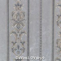 DaVinci-DV305-6