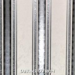 DaVinci-DV307-1