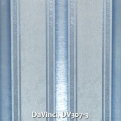 DaVinci-DV307-3