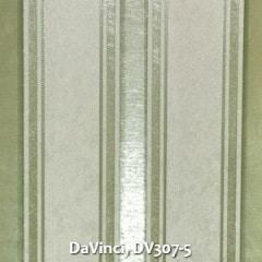 DaVinci-DV307-5