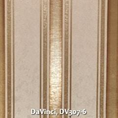 DaVinci-DV307-6