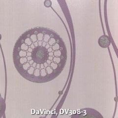 DaVinci-DV308-3