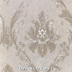 DaVinci-DV309-1