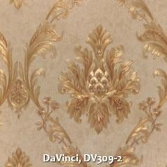 DaVinci-DV309-2