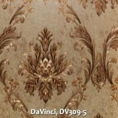 DaVinci-DV309-5