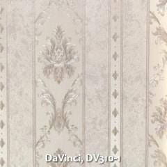 DaVinci-DV310-1
