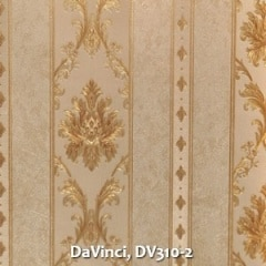 DaVinci-DV310-2