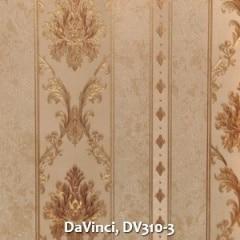 DaVinci-DV310-3