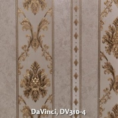 DaVinci-DV310-4