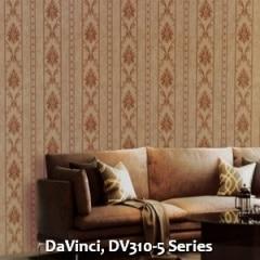 DaVinci-DV310-5-Series