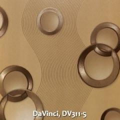 DaVinci-DV311-5