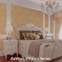 DaVinci-DV312-2-Series