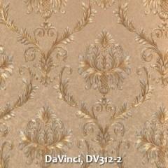 DaVinci-DV312-2