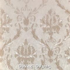 DaVinci-DV312-5