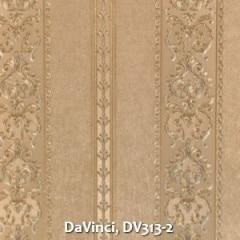 DaVinci-DV313-2