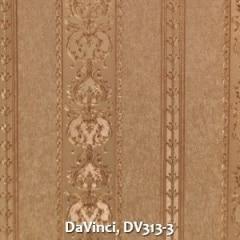 DaVinci-DV313-3