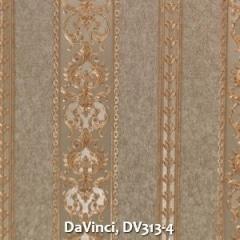 DaVinci-DV313-4