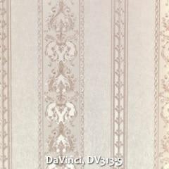 DaVinci-DV313-5