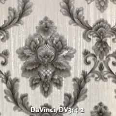 DaVinci-DV314-2