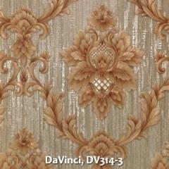 DaVinci-DV314-3