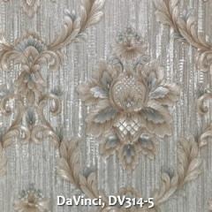 DaVinci-DV314-5