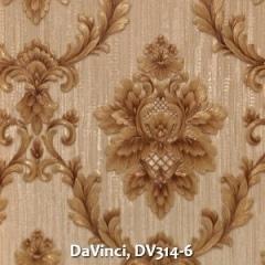 DaVinci-DV314-6
