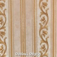 DaVinci-DV315-1