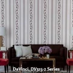 DaVinci-DV315-2-Series