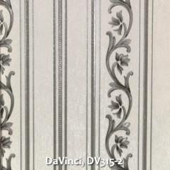 DaVinci-DV315-2