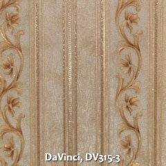 DaVinci-DV315-3