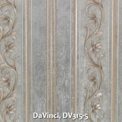 DaVinci-DV315-5