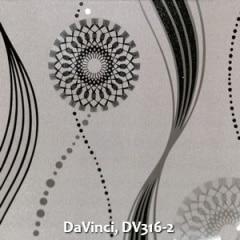 DaVinci-DV316-2