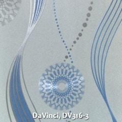 DaVinci-DV316-3