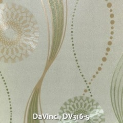 DaVinci-DV316-5