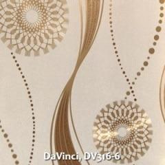 DaVinci-DV316-6