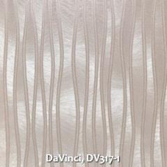 DaVinci-DV317-1
