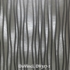 DaVinci-DV317-2