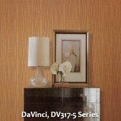 DaVinci-DV317-5-Series