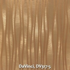 DaVinci-DV317-5