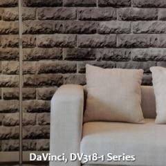 DaVinci-DV318-1-Series