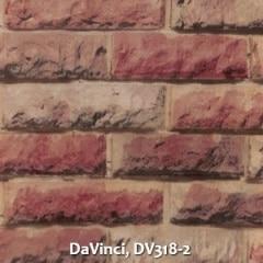 DaVinci-DV318-2