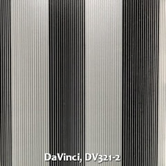 DaVinci-DV321-2